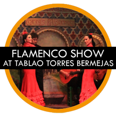 madrid-gay-tours-flamenco-show-madrid