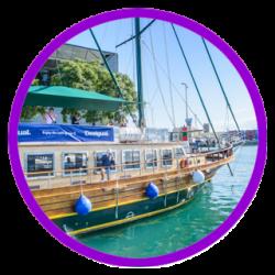Harbour Boat Trip