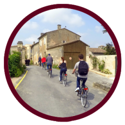 Cycling Saint Emilion