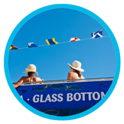 Open top deck + Glass Bottom Boat