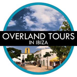 offering gay tours