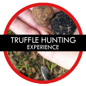 TRUFFLE-HUNTING-TOUR-CROATIA-GAY-TOURS