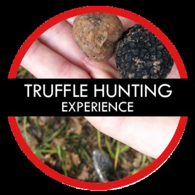 TRUFFLE-HUNTING-TOUR-CROATIA-GAY-TOURS